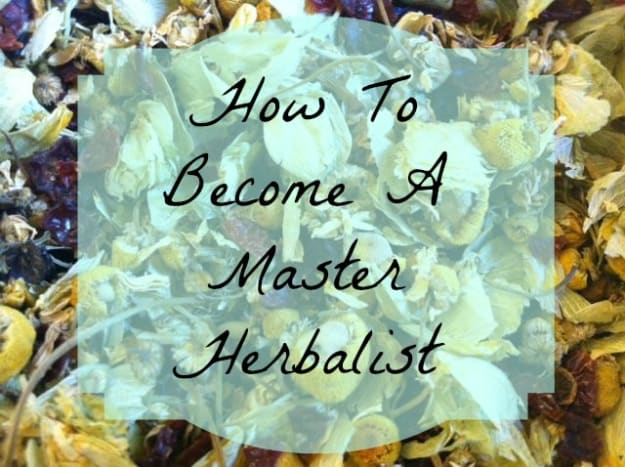 how-to-become-a-certified-master-herbalist