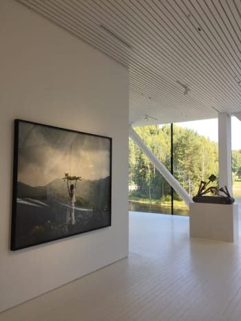 "Marina Abramovic ""Holding the Lamb"", 2010."