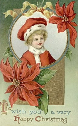 Little boy with poinsettias