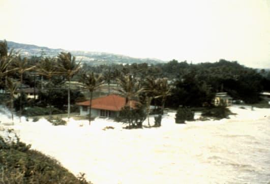 Tsunami striking the coast of O'ahu at La'ie.