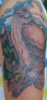 hawk-tattoos-and-meanings-hawk-tattoo-designs-and-ideas-hawk-tattoo-pictures