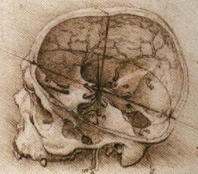 In the middle ages, it was believed that the skull was divided into three chambers: one for the intelligence and imagination, one for memory and one called the sensus communis (pineal gland).