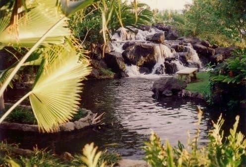 Waterfalls and lush foliage at the Ritz-Carlton Mauna Lani Hotel in Hawaii