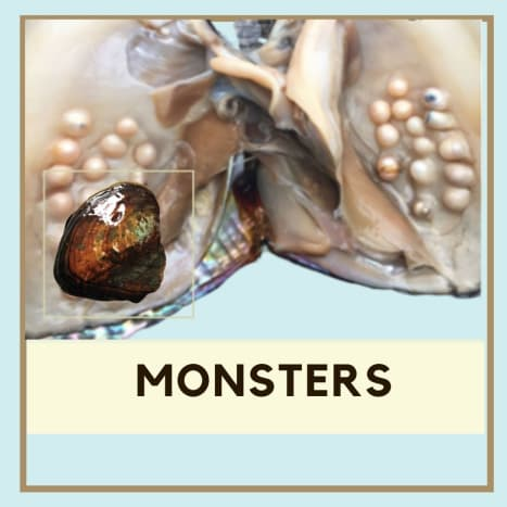 Monster oysters are larger than most and can harbor a large number of pearls at one time.