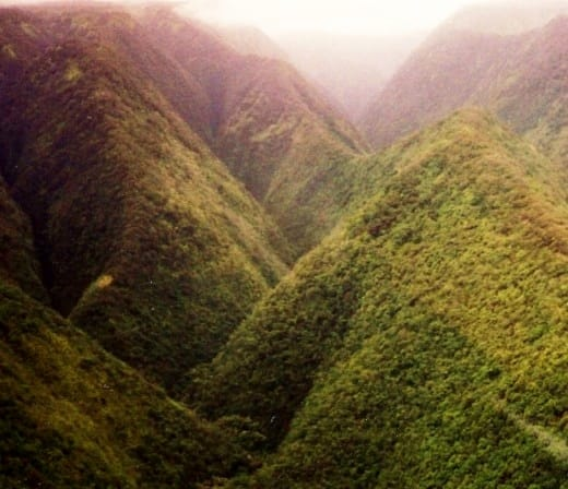 Flying over a rain forest on the Big Island of Hawaii