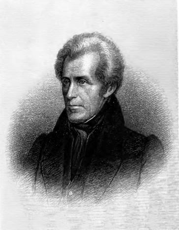 """""""You are a den of vipers and thieves. I intend to rout you out, and by the grace of the Eternal God, will rout you out.""""  This comment was about the bankers."""" - Andrew Jackson"""