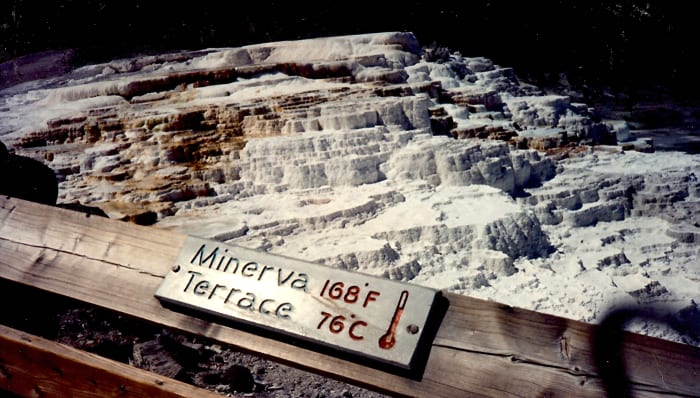 Minerva Terrace in Yellowstone