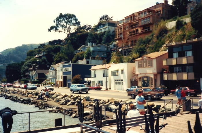 Sausalito shoreline with houses built into the hillside.