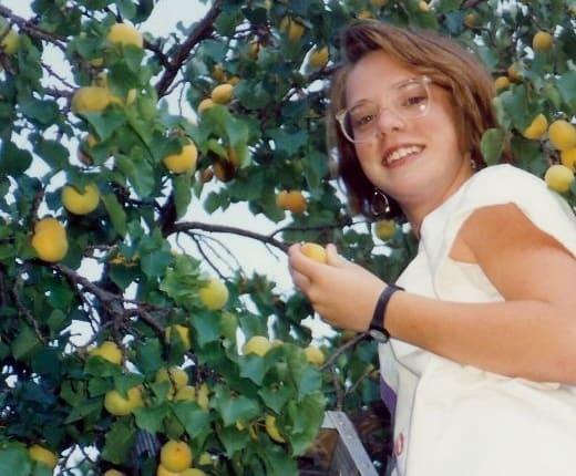 My niece picking apricots in Fruita, Utah