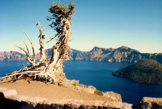 crater-lake-national-park-in-oregon