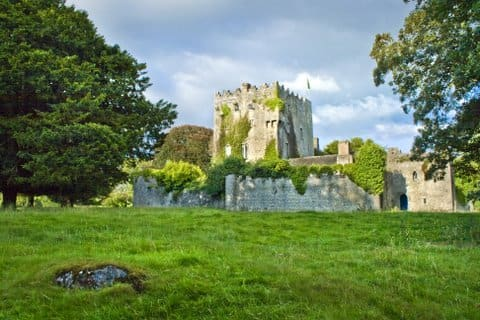 All photos of Cloghan Castle from Premier Properties Ireland