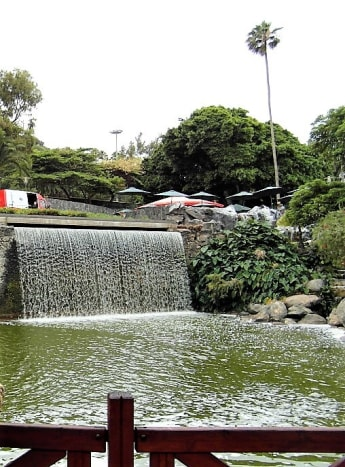 Terraza Parque Doramas overlooks a water feature.
