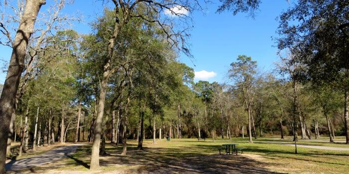Pathways meander through the park.