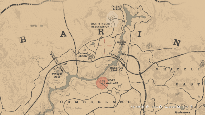 This location is where you can find an Appaloosa.