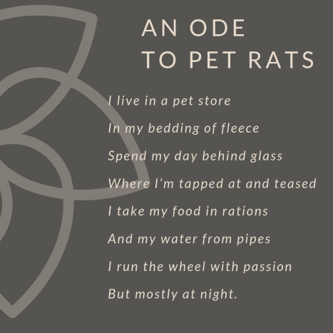 """A Rat's Poem"""