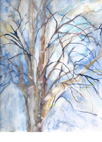 What I imagine my favorite birch tree will look like in the coming months.  You will also be able to see on this painting where I have lifted out color on the right portion of the sky and added color on the trunk.