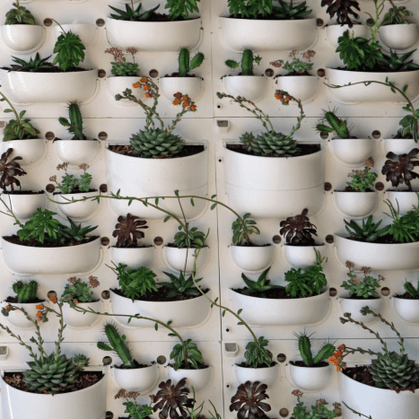 This design utilizes wall tiles with built-in planters.