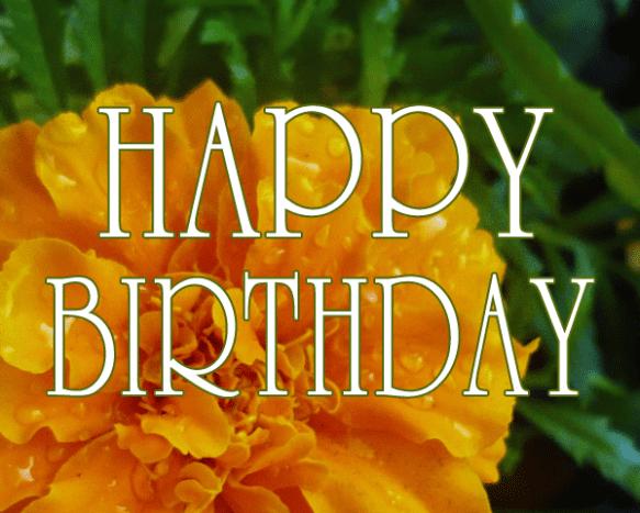 Happy Birthday orange flowers.