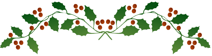 Top holly border one.