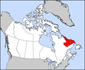 The Labrador sea region . This is the region where the very first Labrador Retrievers were breed.