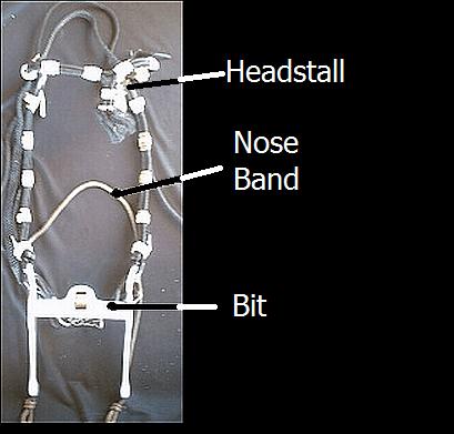 Bridle Parts