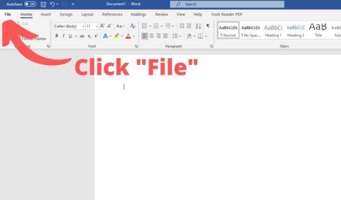 """Click """"File"""""""