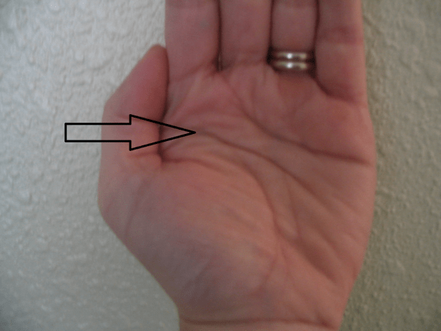 Take a look at your hand and find the second lateral line going across your palm.