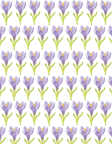 Free flower scrapbook paper: Rows of medium purple crocus images on a white background