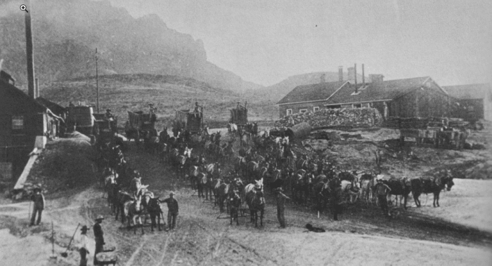 Ore wagons from the Silver King mine at the Pinal mills, circa 1885