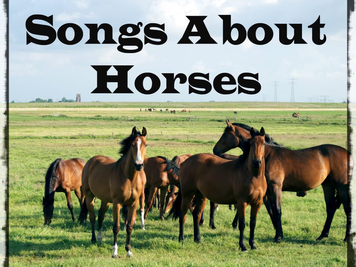 Uk horse betting explained lyrics cash in mail bitcoins wiki
