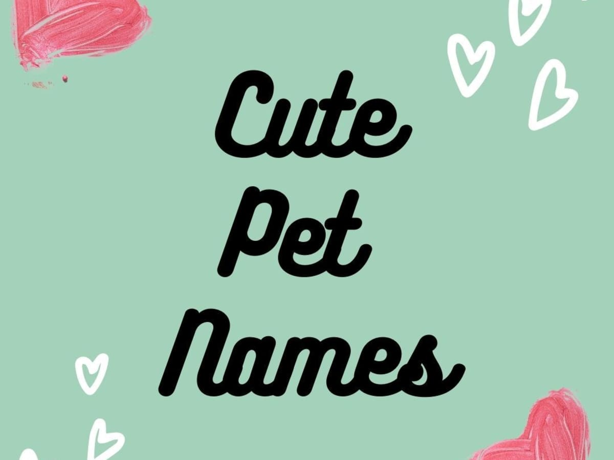 Nicknames for your fiance