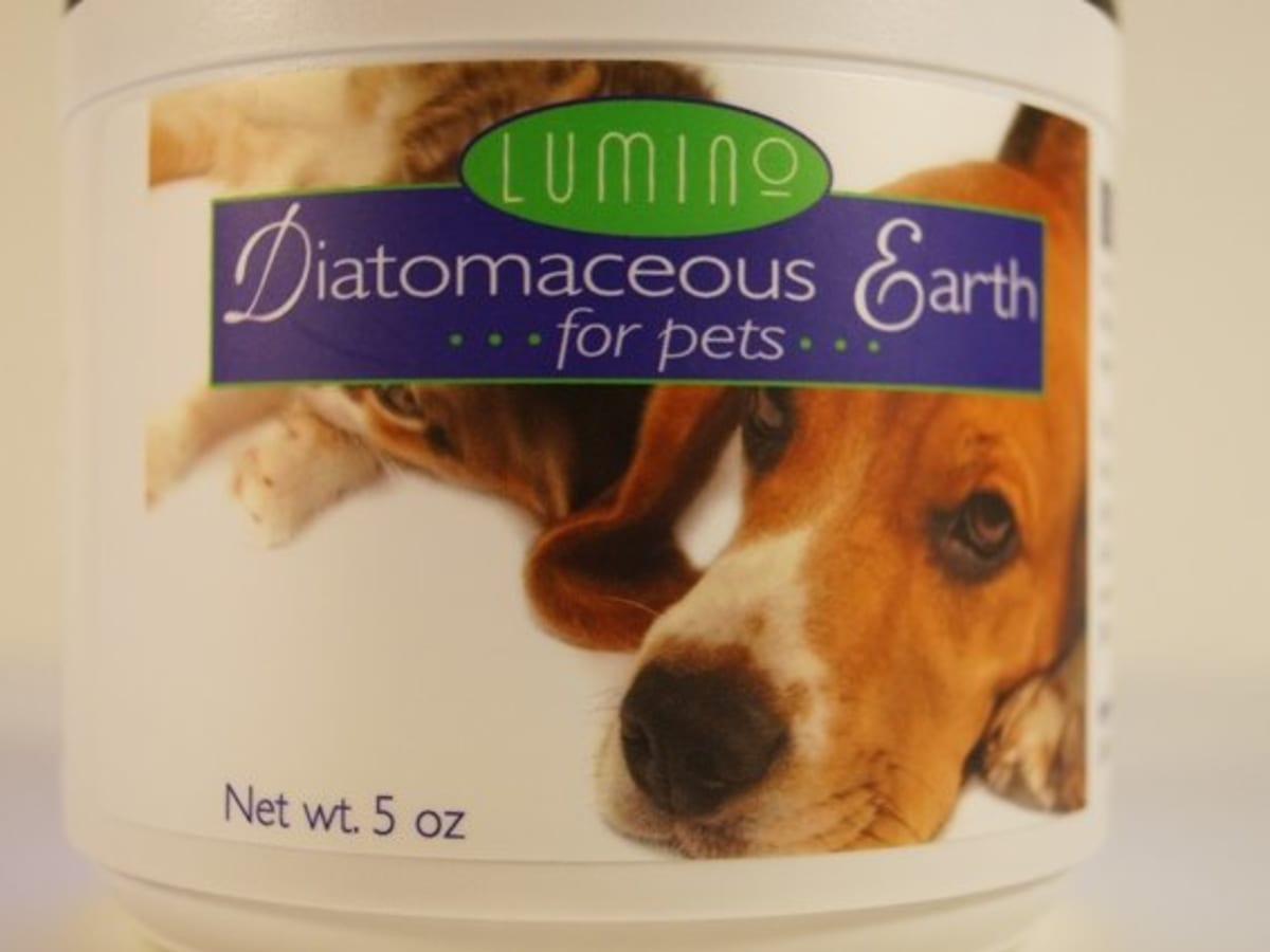 Is Diatomaceous Earth Safe For Dogs And Will It Kill Fleas Uses And Facts Pethelpful By Fellow Animal Lovers And Experts