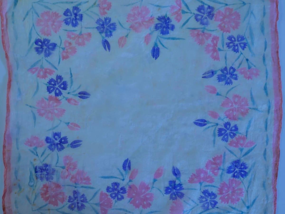 Hanky flower,blossom name