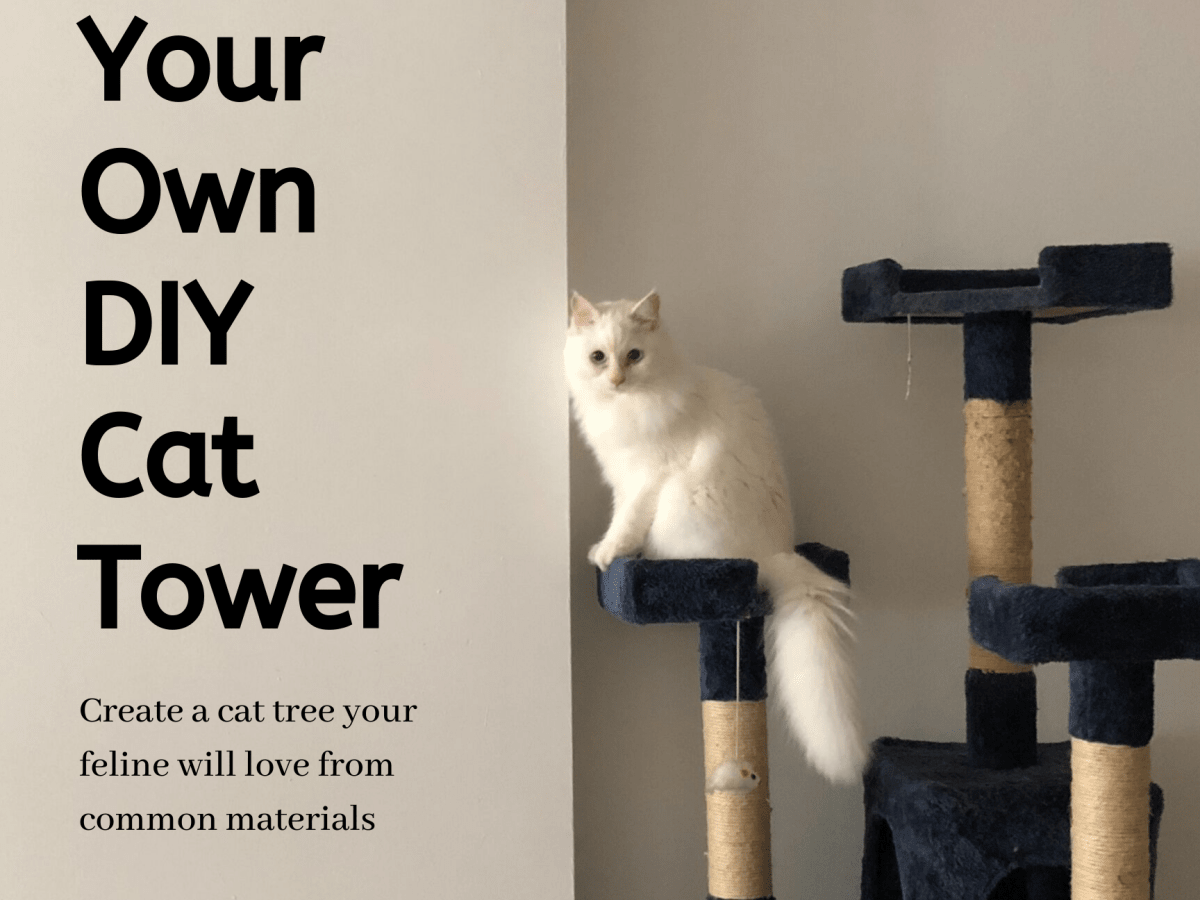 How To Make Your Own Cat Tower Or Cat Tree Pethelpful By Fellow Animal Lovers And Experts
