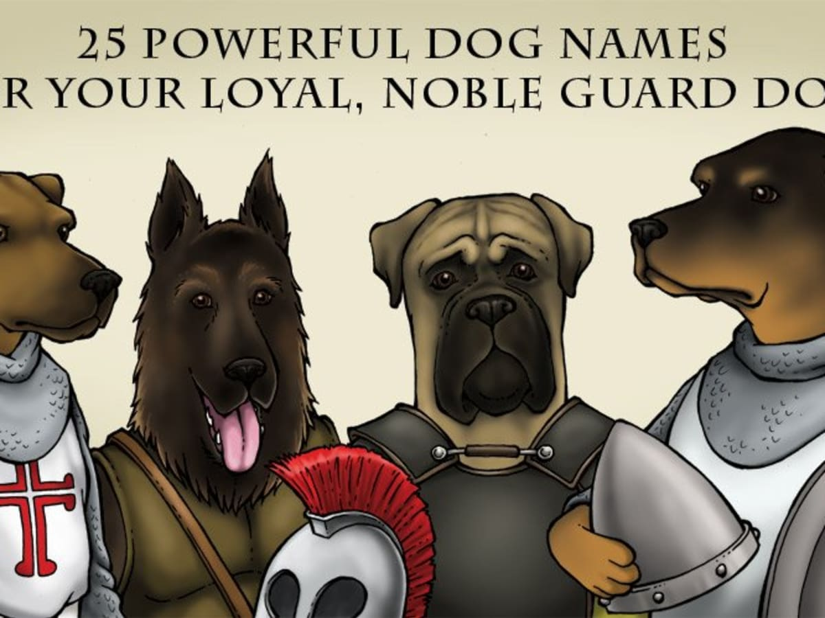 40 Powerful Dog Names For Your Loyal Noble Guard Dog Pethelpful By Fellow Animal Lovers And Experts