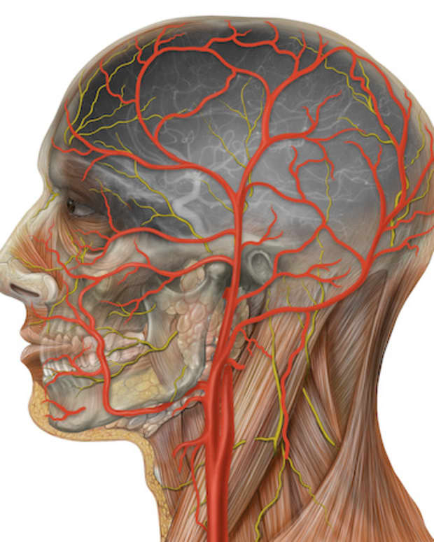 treatment-for-temporal-arteritis-a-personal-experience