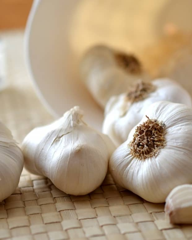 how-to-grow-garlic-like-an-expert