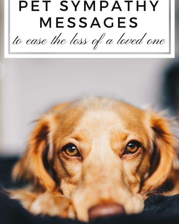 sympathy-messages-pet-loss