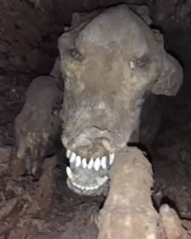 we-call-horror-story