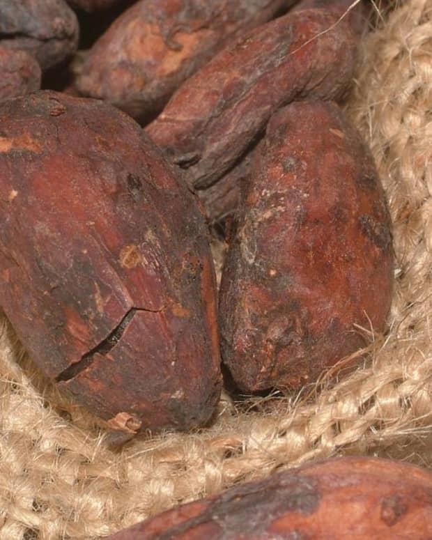 cacao-health-benefits