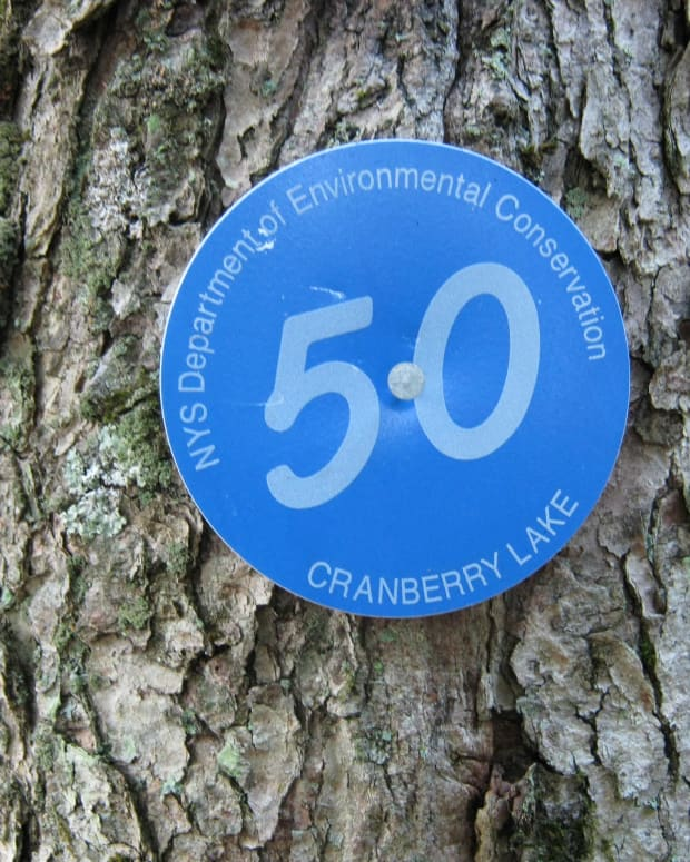 bsckpacking-the-craberry-lake-50-cl50-trail-adirondacks