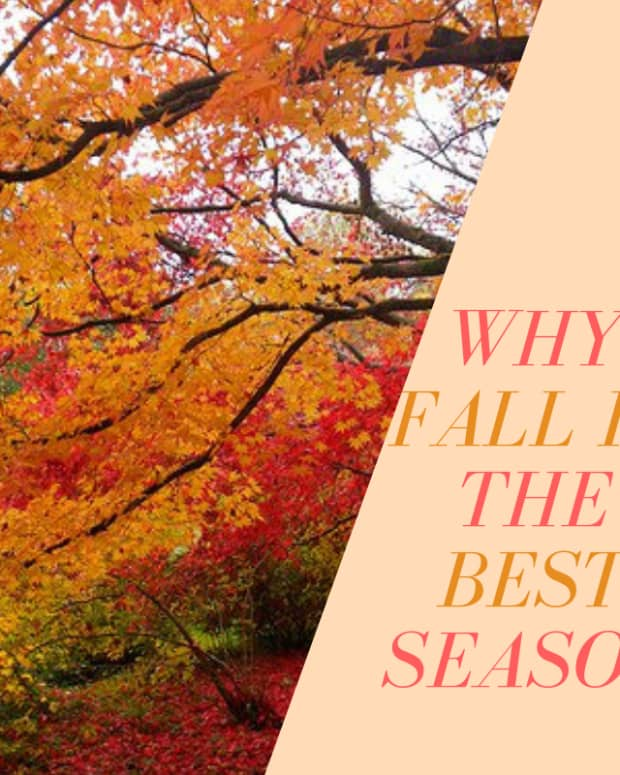 reasons-why-fall-is-the-best-season