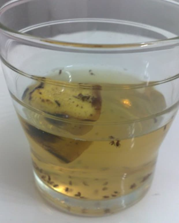 a-simple-way-to-kill-fruit-flies