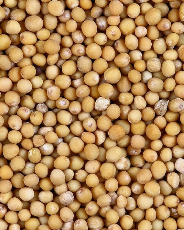 mustard-seeds-and-greens-as-part-of-a-healthy-and-nutritious-diet