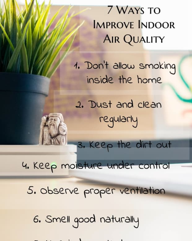 how-to-clean-and-improve-indoor-air-quality