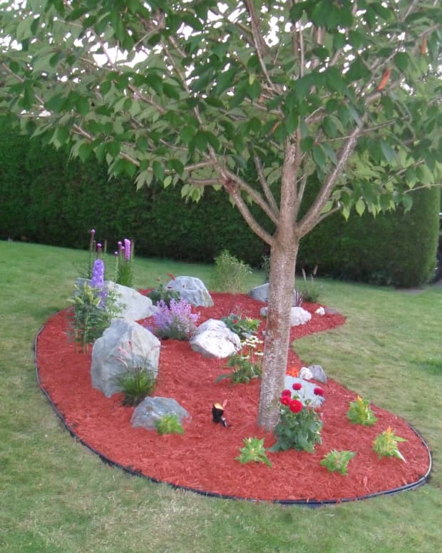easy-diy-landscaping
