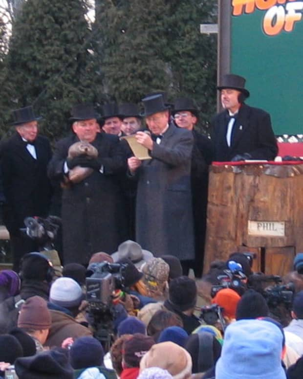 how-groundhogs-started-civilization-a-true-story-of-groundhog-day-origins