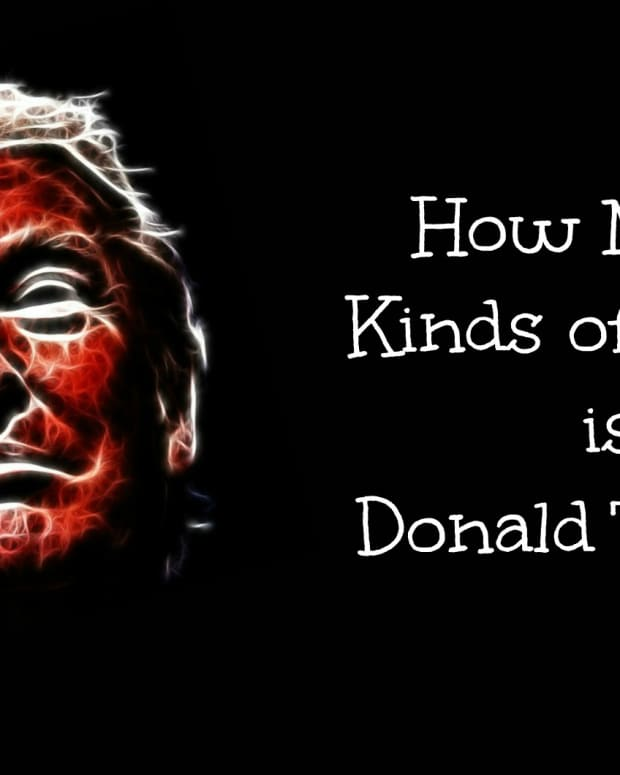 how-many-kinds-of-crazy-is-donald-trump
