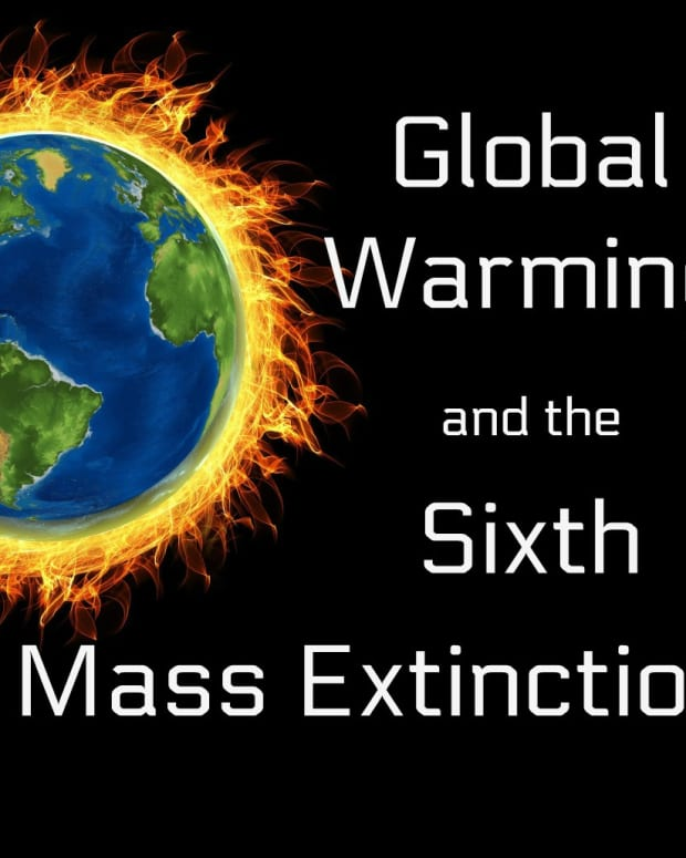 global-warming-and-the-sixth-mass-extinction