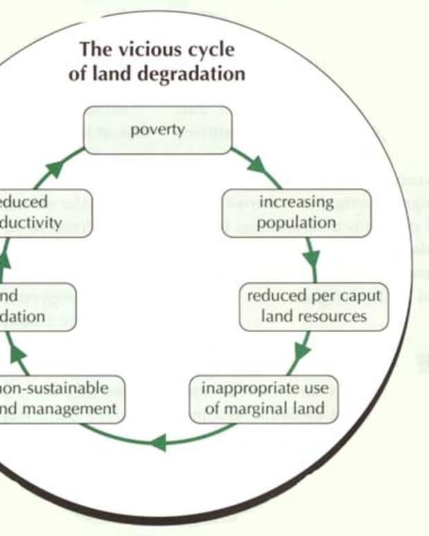 issue-of-land-degradation